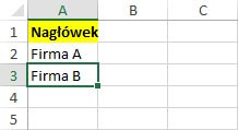 fragment danych Excel z nagłówkiem
