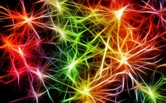 Kolorowy obraz komórek